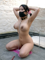 Bondaged asian chick with big boobs,..